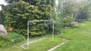 Garten Bild 5